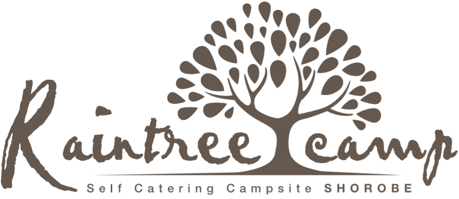 Raintree Camp